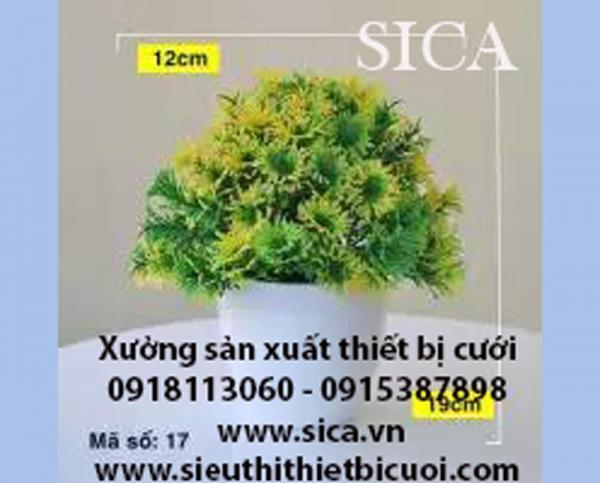http://www.sica.vn/medium/uploads/SP/16-1575709177.jpg