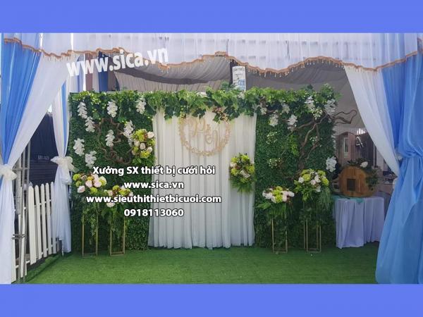 Backdground đám cưới