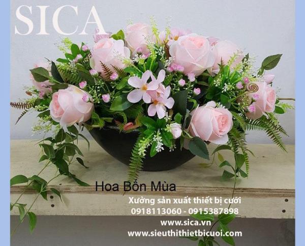 http://www.sica.vn/medium/uploads/SP/20-1575709505.jpg
