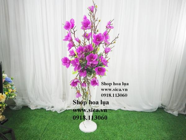 Binh hoa ngoc lan tím