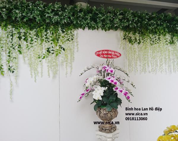 Bình hoa lan trắng tím tặng khai trương