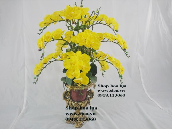 Bình hoa lan vàng để bàn đẹp