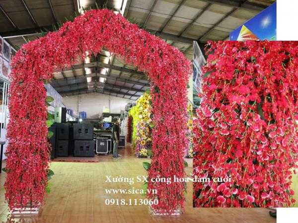 Cổng cưới hoa lan vũ nữ màu hồng sen