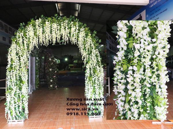 Cổng cưới hoa tử đằng trắng