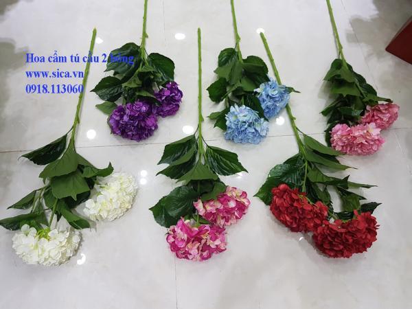 Hoa cẩm tú cầu cao cấp