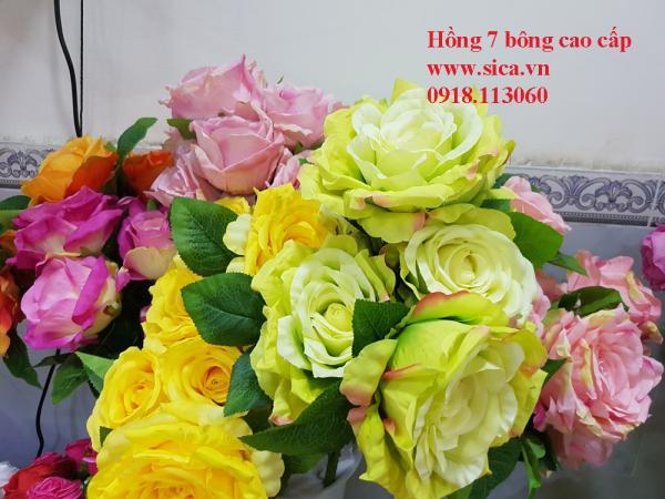 Hoa hồng 7 bông loại 1 cao cấp