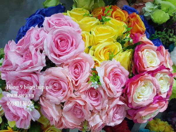 Hoa hồng 9 bông búp nỡ
