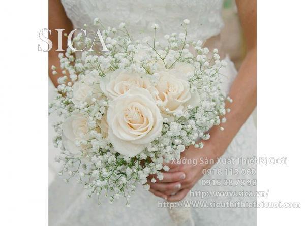 Đóa hoa hồng trắng