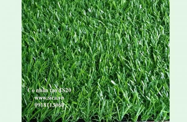 Mua bán thảm cỏ nhân tạo, cỏ sân banh S20