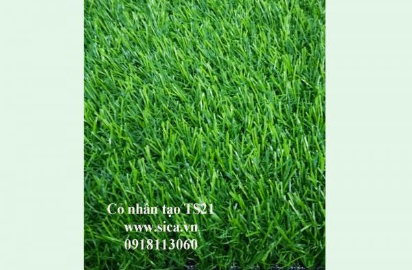 Mua bán thảm cỏ nhân tạo, cỏ sân banh S21